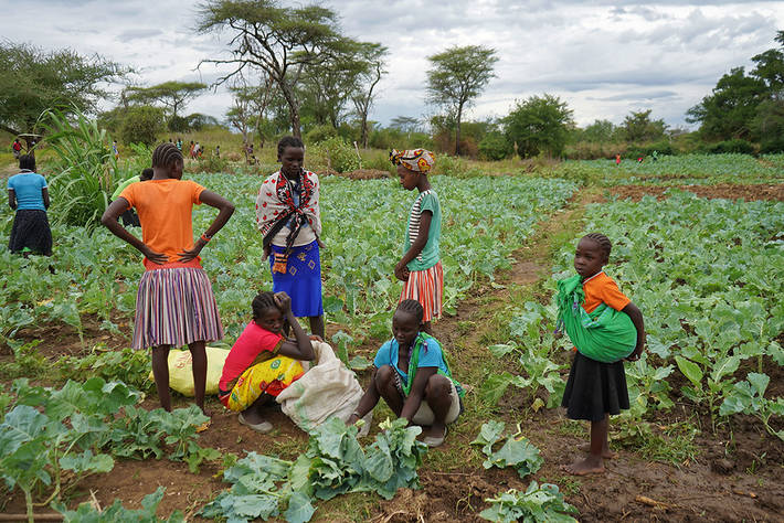 A battle plan for ensuring global food supplies during the COVID-19 crisis  | Africa Renewal