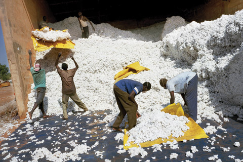 Workers at a cotton mill in Mali