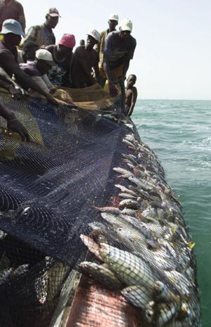 Africans know how to fish, says African Development Bank President Donald Kaberuka