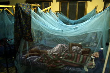Insecticide-treated bed nets
