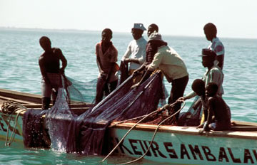 Senegalese fishing boat