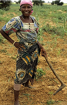 Farmer in Niger