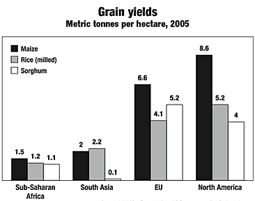 Grain yeilds graph