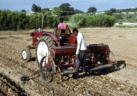 Mechanized agriculture in Tanzania