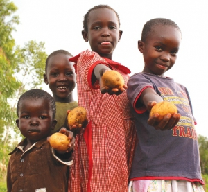 sub saharan africa shows progress in halving the proportion and the