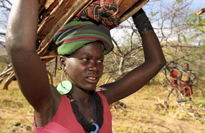 African women continue to face not only widespread poverty, but also heavy labour burdens