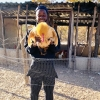 Terrence Maphosa with his poultry. Photo credit: Terrence Maphosa