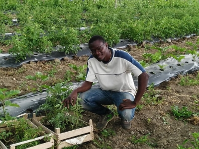 Ismael, 38 Farming entrepreneur from Benin, now in northern Italy