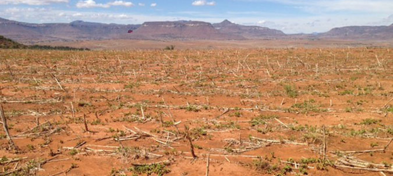 Barren fields due to the impact of El Niño-induced drought in the Southern African nation of Lesotho. Photo: FAO