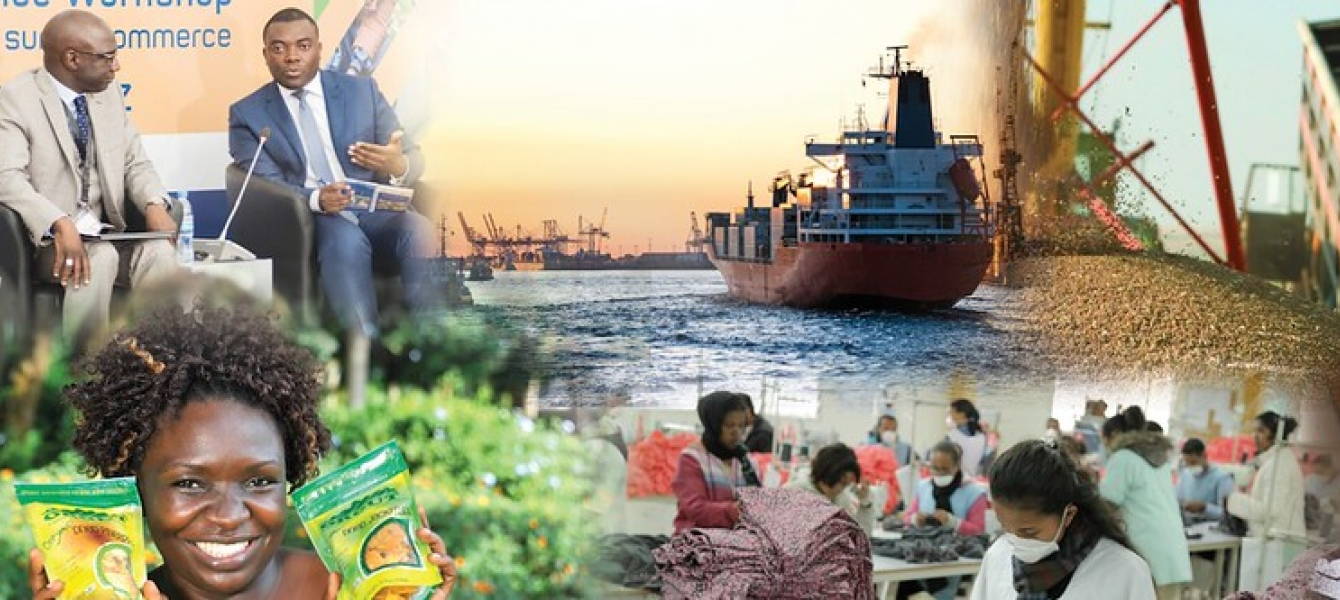 Africa's economy has become diverse and multi-faceted