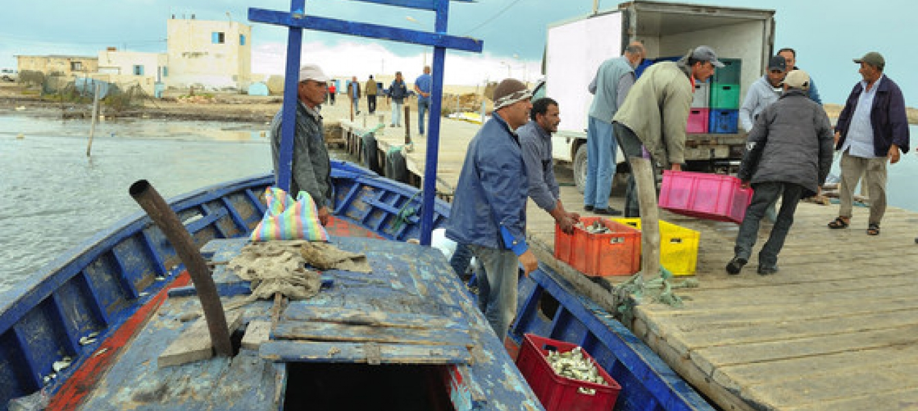 Twenty years ago Tunisian fishermen were able to fish octopus off the coast of the North African country, but changes to the climate mean that is no longer possible. Photo: UNDP Tunisia