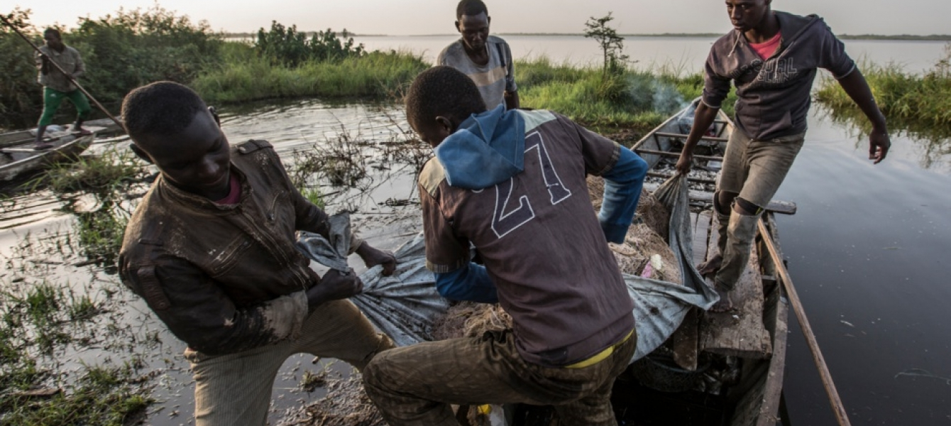Nigerian refugees continue as fishermen, often in partnership with their Chadian counterparts from the host community. © UNHCR/Oualid Khelifi