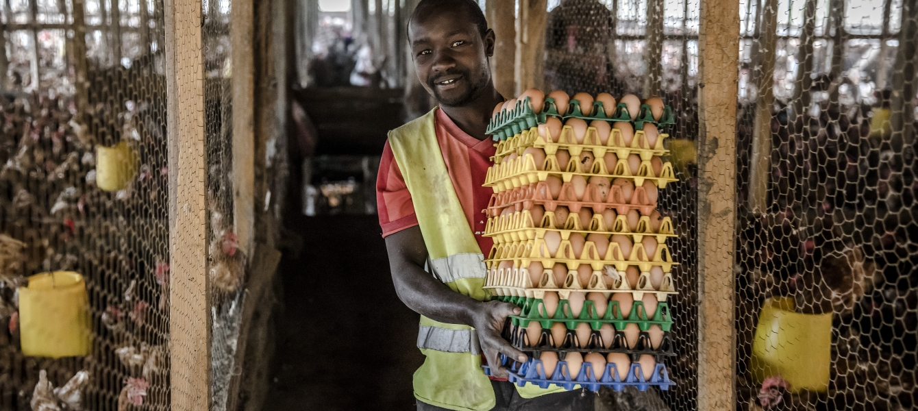 A man with chicken eggs in his hands.