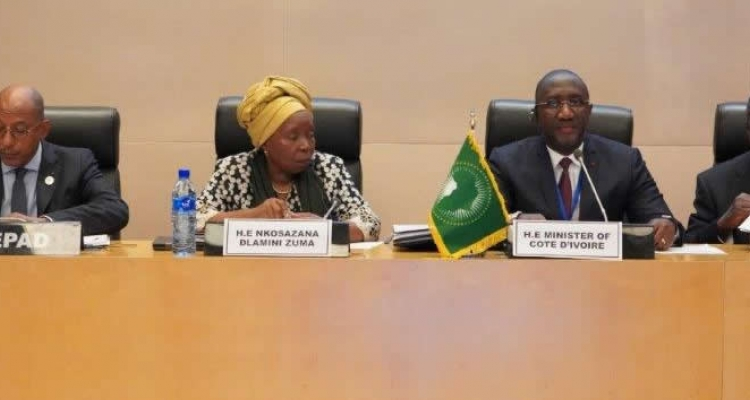 Meeting of African Union member states