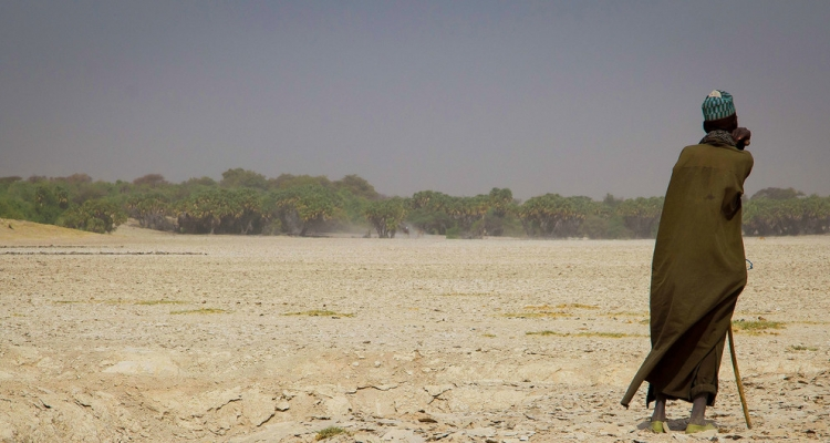 Lake Chad has lost up to ninety per cent of its surface in the last fifty years.