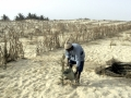 A farmer in the drought-affected area of Senegal watering plants. Photo: UN Photo/Carl Purcell