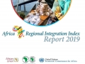 The 2019 Index, which builds on the first edition published in 2016, provides up-to-date data on the status and progress of regional integration in Africa.