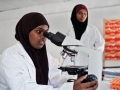 Young women study in a science laboratory at Mogadishu University, Somalia. Photo: Panos/Sven Torfinn