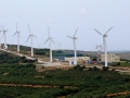 A wind turbine farm in Tunisia. Photo: World Bank / Dana Smillie