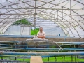 Mr. Mendes, 35, the owner of Frutos da Lagoa, a semi-intensive fish farm.