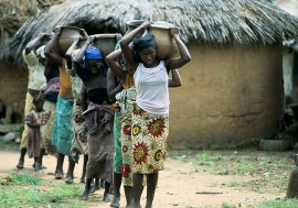 Young women and girls carry water in Nigeria.