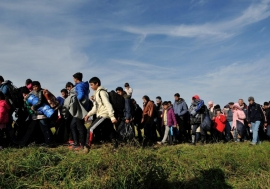 A column of refugees and migrants is walked across fields by police in Slovenia in this October 2015 file photo.  © UNHCR/Mark Henley