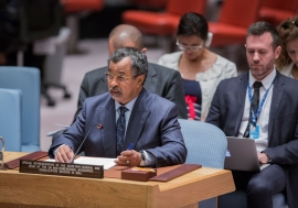 Saleh Annadif, Special Representative of the Secretary-General for Mali and Head of the United Nations Multidimensional Integrated Stabilization Mission in Mali (MINUSMA), briefs the Security Council. UN Photo/Manuel Elias