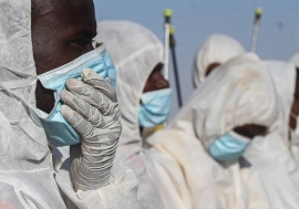 Participants in FAO's Desert locust response work in Somalia wearing face masks