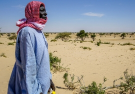 Desertification threatens the village of Tantaverom. Mbo Malloumu has taken the initiative to plant acacia seedlings to rehabilitate the land. In the past 50 years, Lake Chad basin shrank from 25,000 square kilometers to 2,000 square kilometers. / Hakuzim