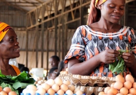 Women selling eggs