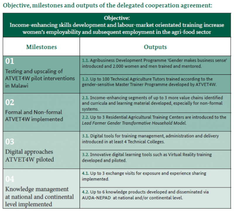 Objectives, milestones, and outputs of the delegated cooperation agreement