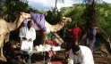 Health workers attend to patients at a camel mobile clinic in Samburu, Kenya. Photo credit: CHAT