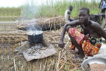 An internally displaced woman seeking refuge from the ongoing violence in the swamps of Unity state, cooks her last supply of sorghum. Photo: FAO South Sudan
