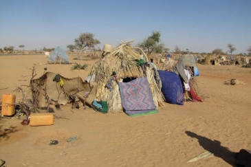 A makeshift refugee shelter beside the highway east of Diffa, Niger.