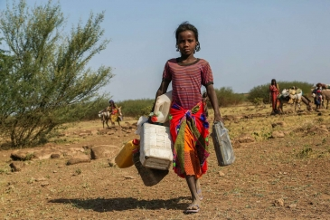 A severe drought in Ethiopia has meant that Sofia, 12, has to walk 35 kilometres from her family's home to the nearest water point, then all the way back carrying heavy containers.