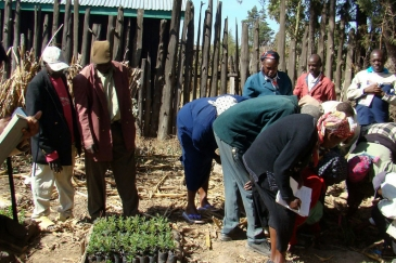 Field school members in Kenya take agro-ecosystem analysis. Photo From: FAO
