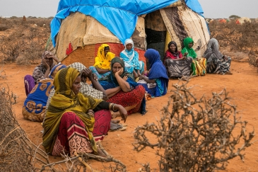 Pastoralists moved to temporary sites close to permanent water point, as drought affected Ethiopia Somali region (2017). Photo by UNOCHA/Mulugeta Ayene