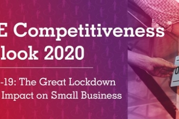 SME Competitiveness Outlook 2020