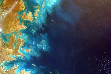 The UN Biodiversity Lab brings planetary data to policymakers to support delivery of the UN Biodiversity Conservation's Aichi Biodiversity Targets and the Sustainable Development Goals.