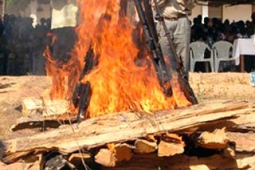 Symbolic burning of arms following Guinea-Bissau's civil war