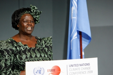 An image of Wangari Maathai