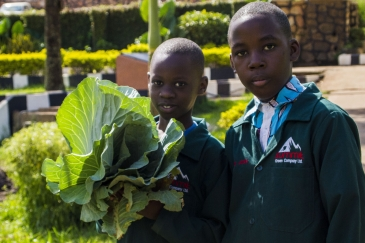 A student holding an SDG badge (top). Students holding vegetables from the school garden (left). Brian (WEYE Clean Energy) displays a  bag of briquettes (right).  Photo:  Solomon Musisi