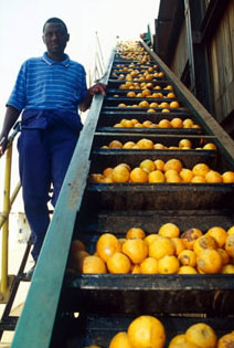 New barriers hinder African trade | Africa Renewal