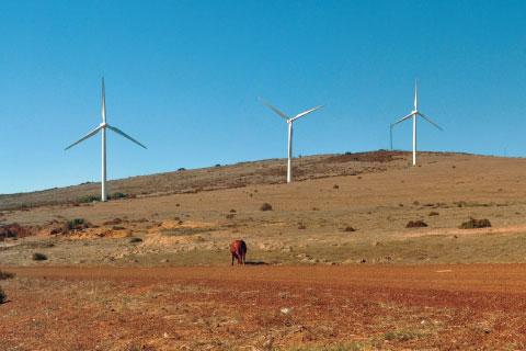 Turbines at the Darling Wind Farm in South Africa