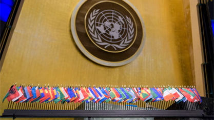 UN Member States flags