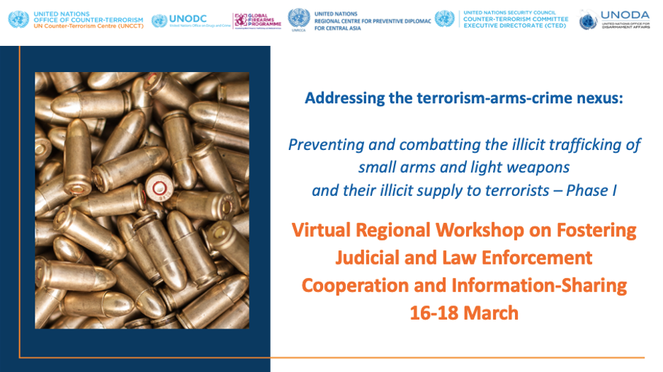 Graphic of the Virtual Regional Workshop