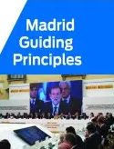 Cover of the Madrid guiding principles publication