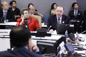 Follow-up to the Second World Assembly on Ageing