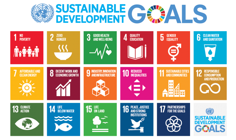 Sustainable Development Goals (SDGs) and Disability | United Nations Enable