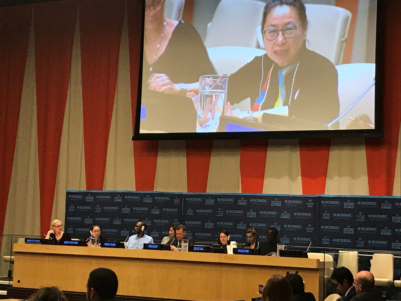 Professor Sakiko Fukuda-Parr, Vice-President of the Committee for Development Policy (CDP), participating as a panelist in the ECOSOC Integration Segment on July 8